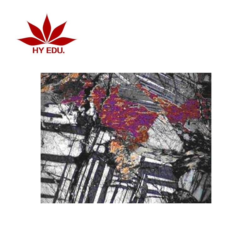 買品質好的巖石標本薄片固定套裝24片當選紅葉教學儀器|浙江雞胚胎切片套裝