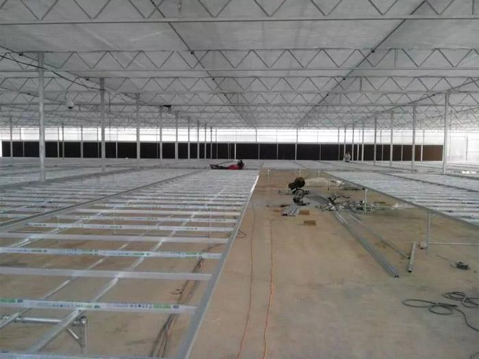 温室大棚建造厂家_安徽温室大棚工程设计