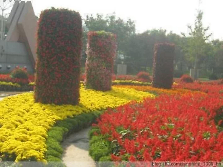 寻求立体花坛-可信赖的提供立体花坛造型推荐