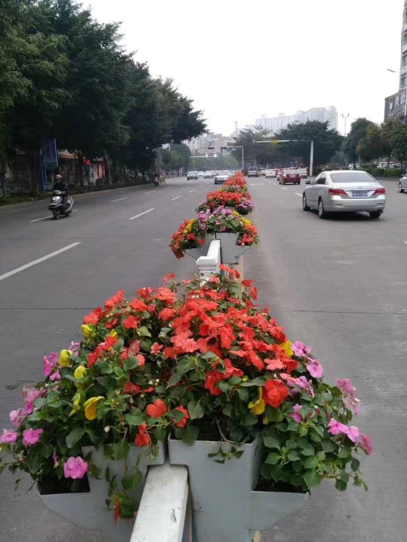 立体花坛多少钱-江苏哪家提供立体花坛造型公司专业