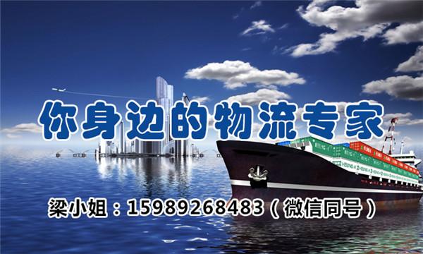 广东专业的国内海陆联合运输公司 平价海运物流