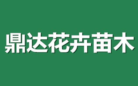 青州市鼎达花卉苗木有限公司