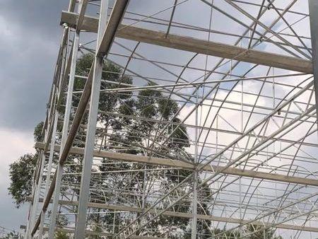 玻璃大棚-福建效果好的温室大棚