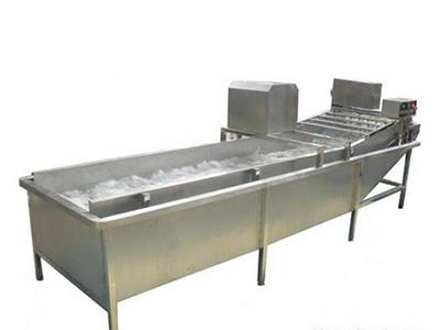 洗菜机规格_宁波专业的洗菜机_厂家直销