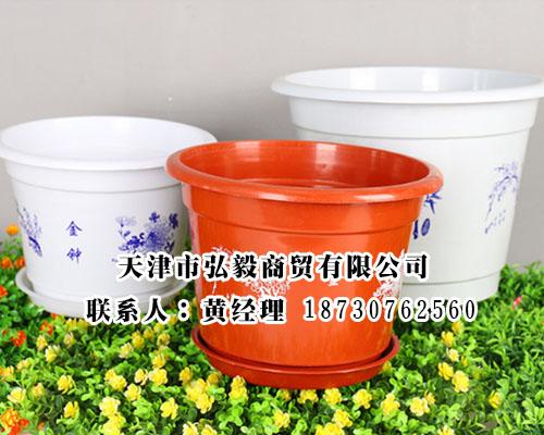 价格实惠的塑料花盆沧州哪里有_广西塑料花盆