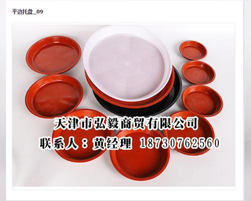 沧州品牌好的塑料托盘提供商_塑料托盘免费领取支付宝红包的公众号厂家