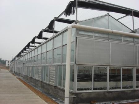花花世界《蔬菜温室大棚建造》《蔬菜温室大棚建设》