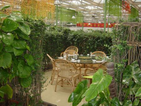 生态餐厅温室建设建造商 口碑好的生态餐厅哪里有