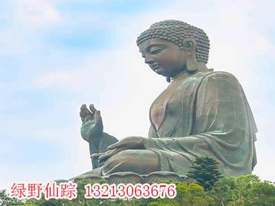 漯河锻铜和记报价,想做锻铜和记就到郑州绿野仙踪园艺