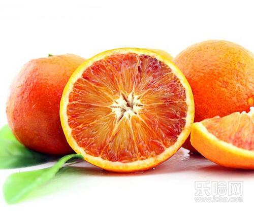 营养血橙代理,超值的营养血橙推荐