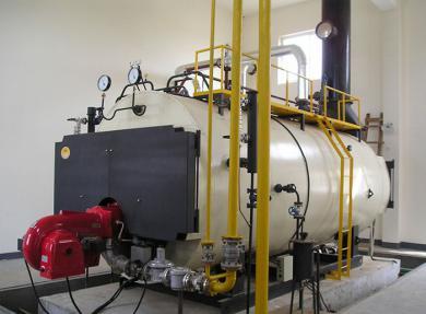性价比高的冷凝蒸汽锅炉在哪可以买到 批售燃气锅炉