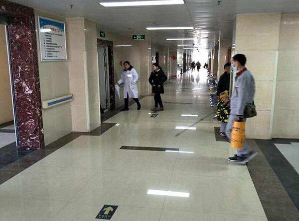 郑州灭蚊蝇-口碑好的公共区域专业灭蚊蝇推荐