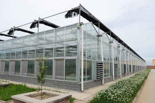 温室大棚建造找哈尔滨华宸绿建-红岗温室大棚