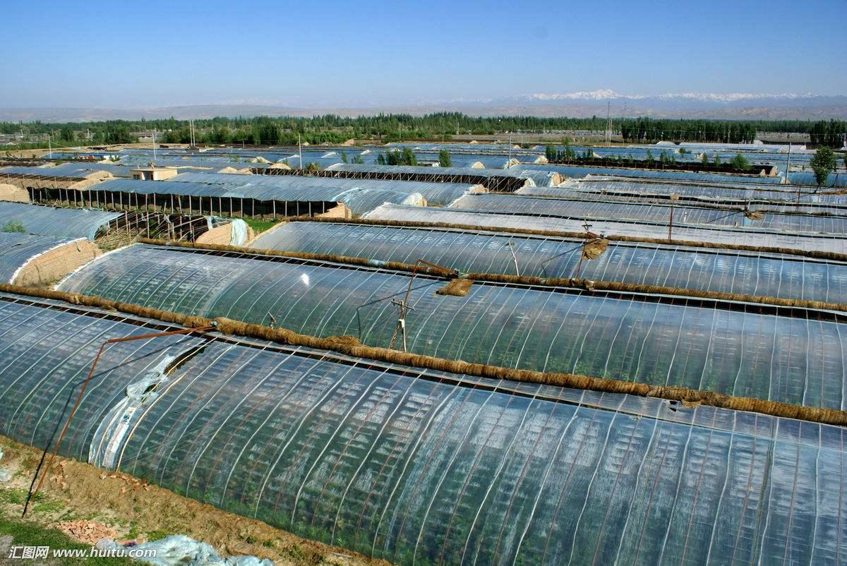 温室大棚工程项目|林甸温室大棚