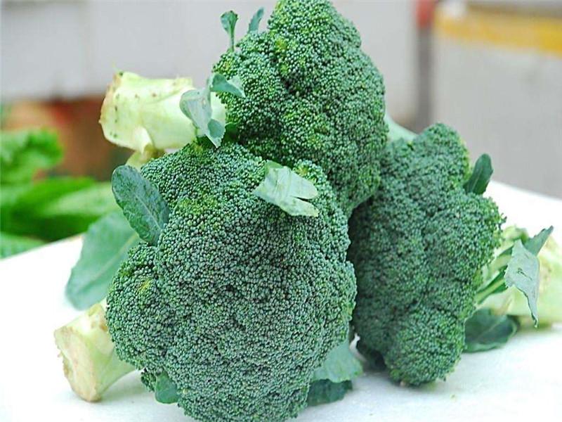 蔬菜配送有什么特色 蔬菜配送