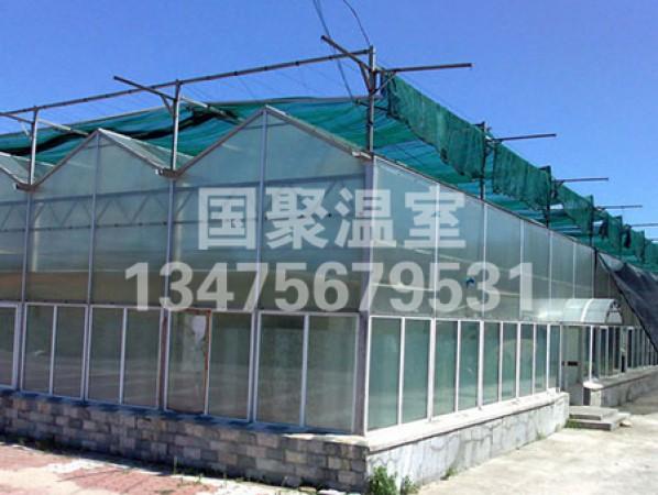 新型阳光板温室大棚 阳光板温室大棚报价 阳光板温室大棚承建商