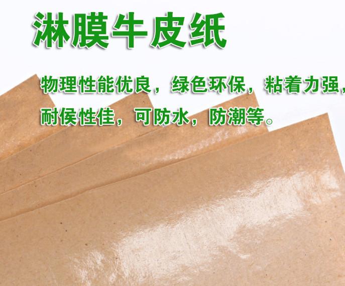 马鞍山淋膜牛皮纸_郑州淋膜牛皮纸推荐