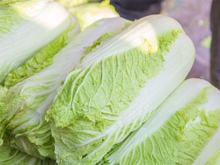 大連蔬菜配送價格_想要蔬菜配送找金福隆餐飲管理有限公司