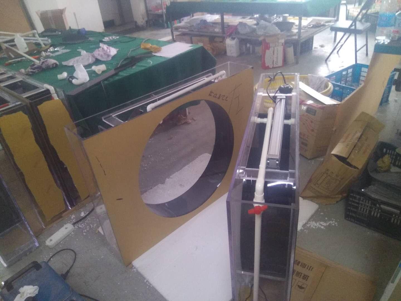 泸州水母缸水母缸报价-帝幽销量好的水母供应
