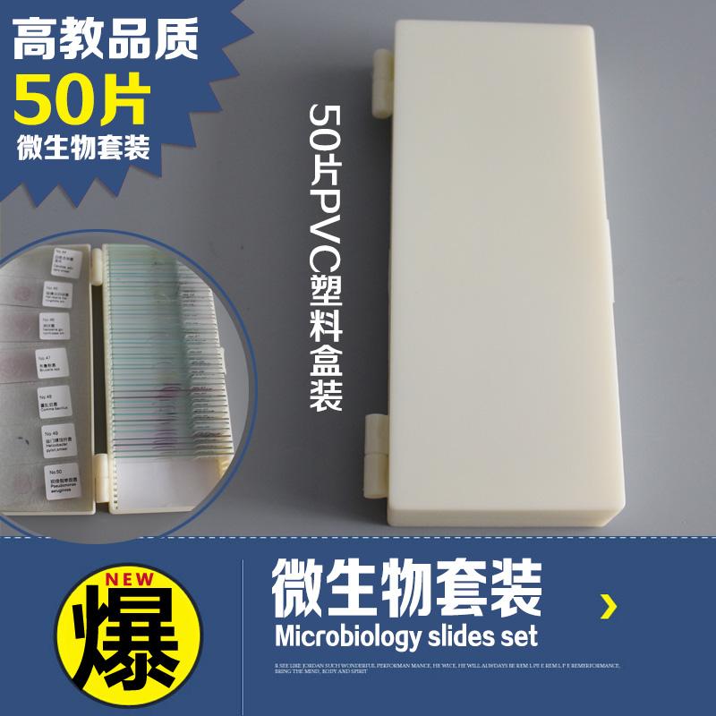 50种微生物套装