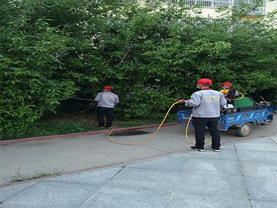 河南专业灭鼠公司|位于驻马店知名的专业灭鼠公司