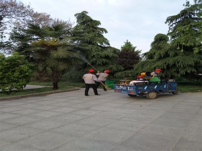 河南可靠的公共区域专业灭蚊蝇服务 灭蚊蝇