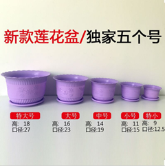 弘毅商贸有限公司供应价位合理的莲花盆_专业定做塑料花盆