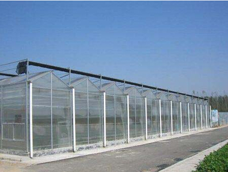 潍坊连栋温室大棚专业建设――薄膜拱形连栋温室建造商