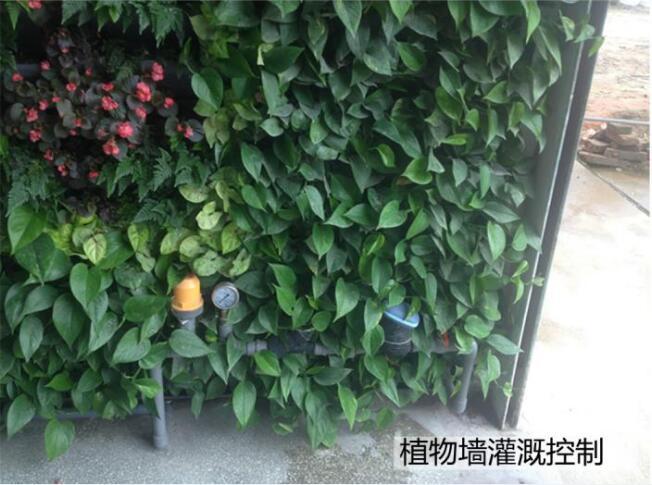 长沙优惠的立体绿化滴灌系统哪有卖 立体绿化滴灌系统供货商
