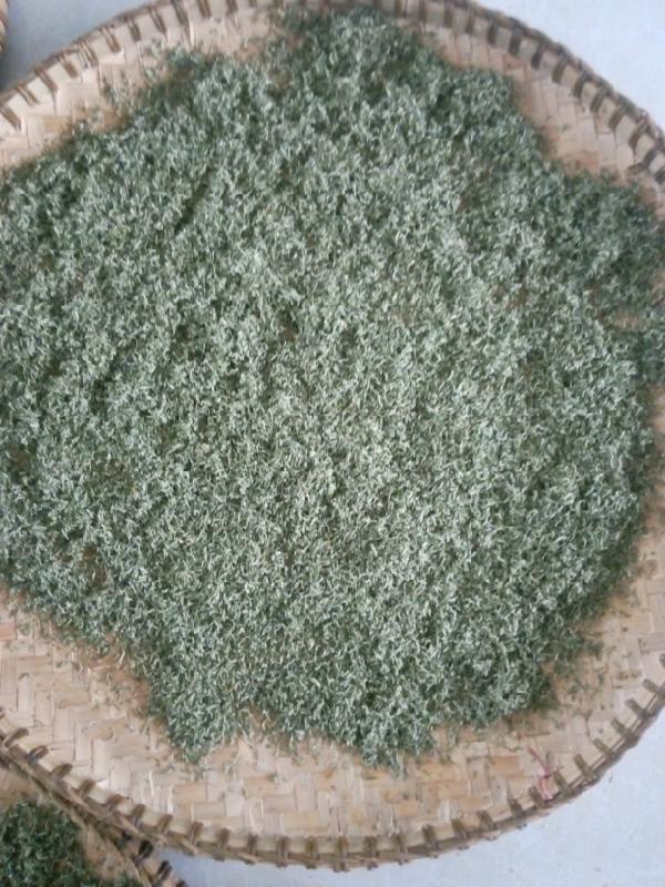 采购划算的都匀毛尖茶就找新光茶叶 绿茶批发