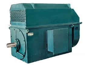 西安高压电机厂家 湖北电机 高压电机