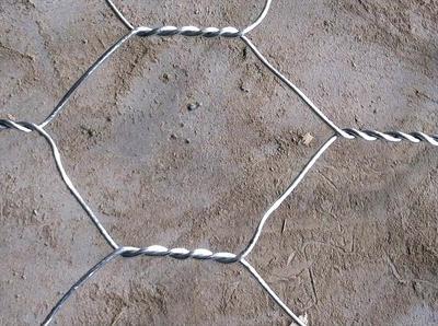 重慶五擰石籠網|河北可靠五擰石籠網廠家直銷