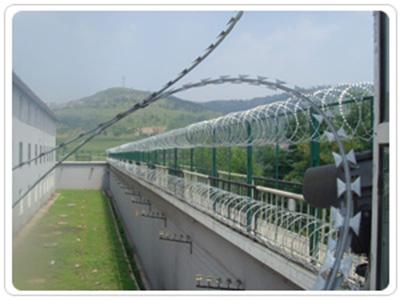 河北有品质的监狱隔离栅_监狱隔离栅供应商