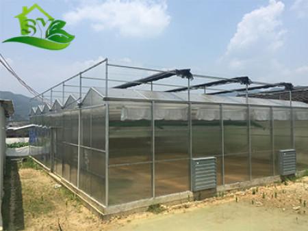 漳州简易大棚优点_耐用的江西温室大棚推荐