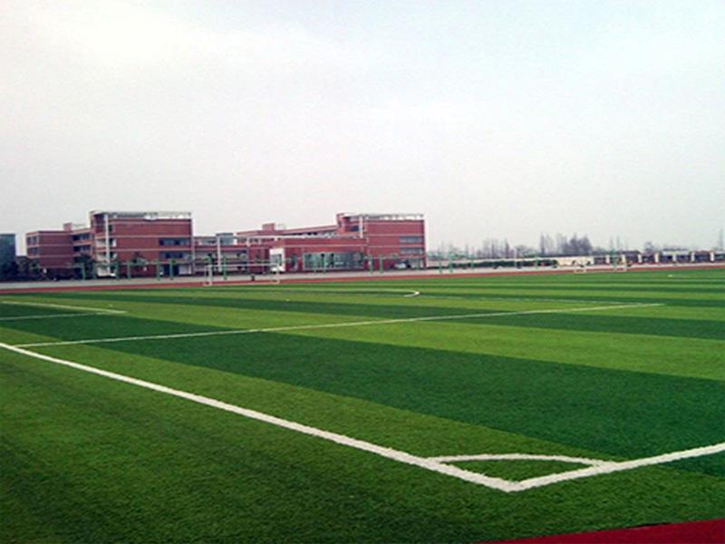 重庆人造草坪厂家-保定哪里有供应优惠的人造草坪