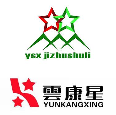 辽宁双星脊柱梳理科技有限公司
