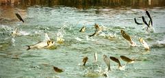 青岛专业的水质检测服务公司在哪里,水质检测名列前茅