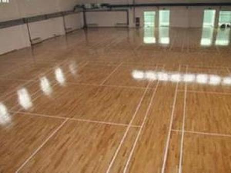专业供应运动实木地板|舞蹈室实木地板就来辽宁优体地板有限公司
