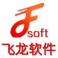 濮阳市飞龙软件科技有限公司