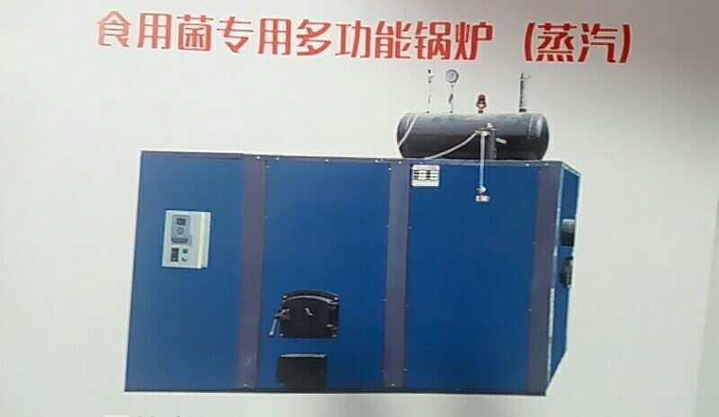 臨沂食用菌滅菌鍋爐哪家好——山東蒸汽發生器批發