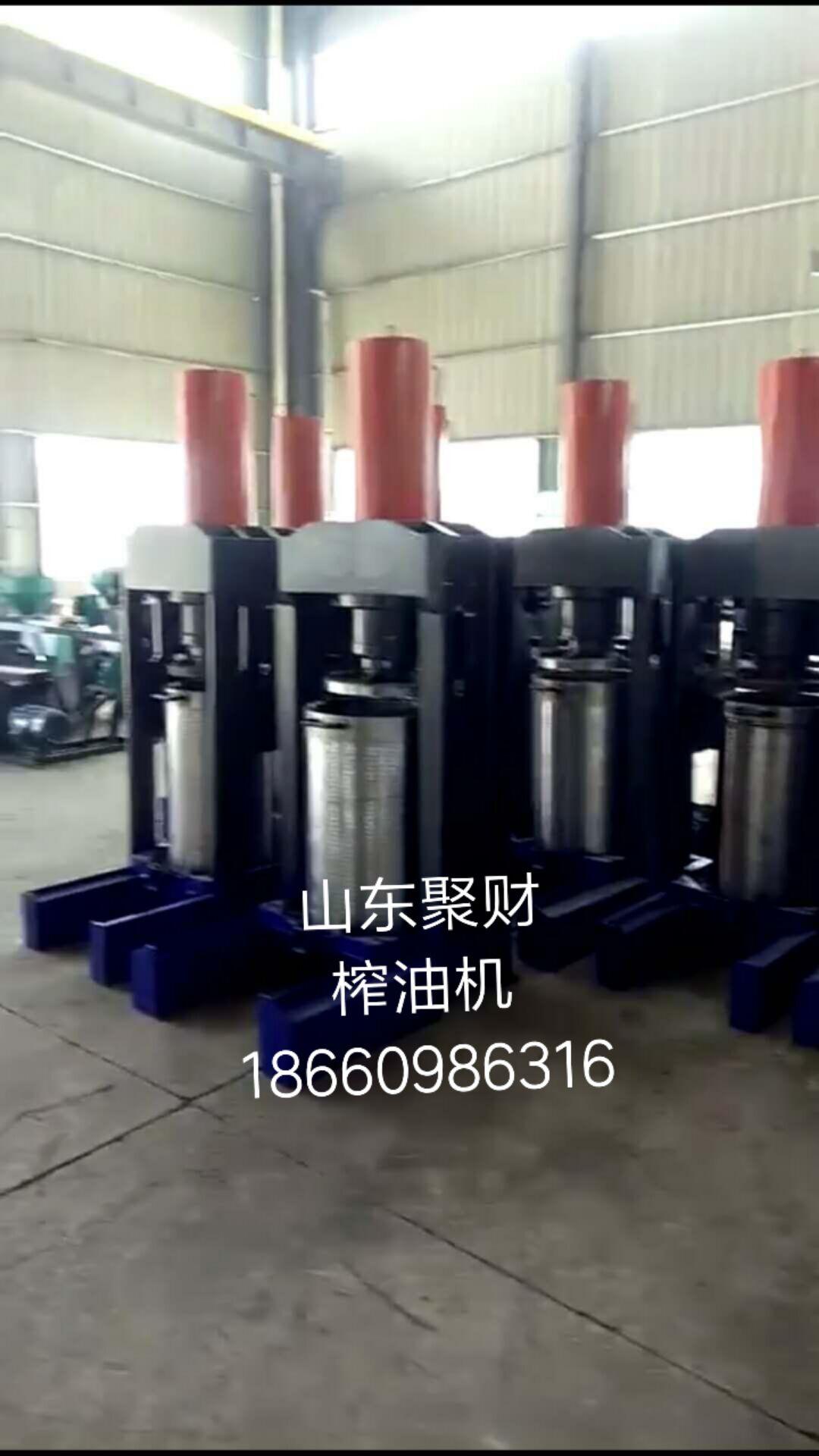 定制花生榨油机|哪有合格的花生榨油机成套设备制造厂