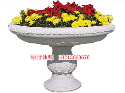 鹤壁花盆价格——花盆优质供应商_郑州绿野仙踪园艺