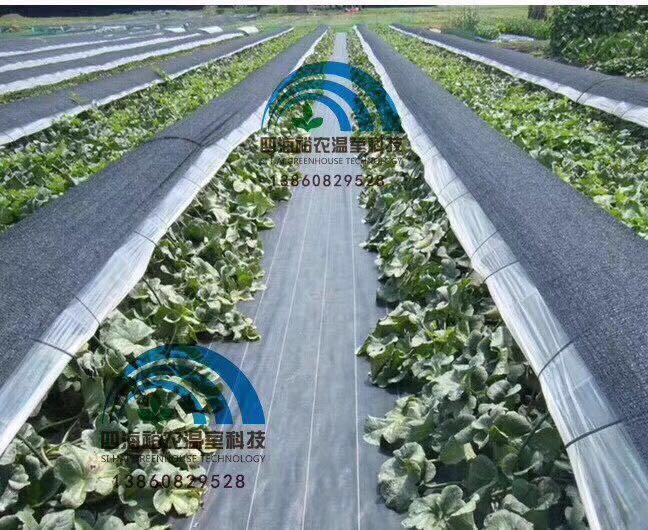 漳州园艺资材价格-质量好的园艺资材推荐