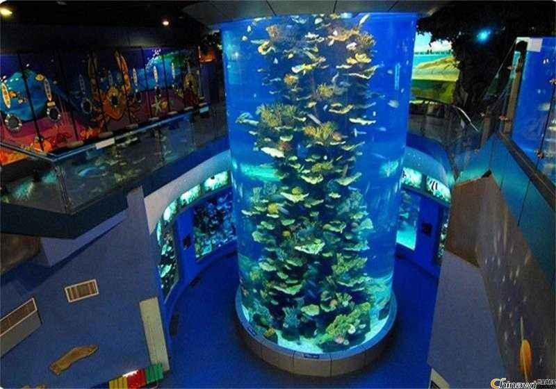 亚克力圆柱管大型鱼缸