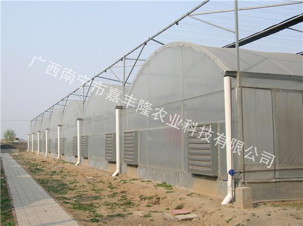 南寧單體溫室大棚-廣西實用的單體大棚