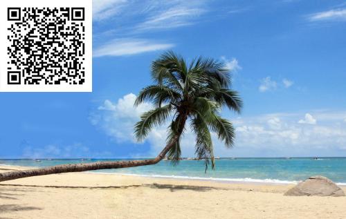 超值的酒店服务推荐_可靠的特价酒店海南三亚