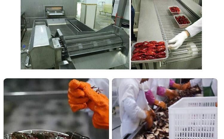 【特别推荐】薯条液氮速冻机厂家