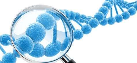 濮阳儿童全项基因检测价格|具有口碑的儿童全项基因检测服务推荐