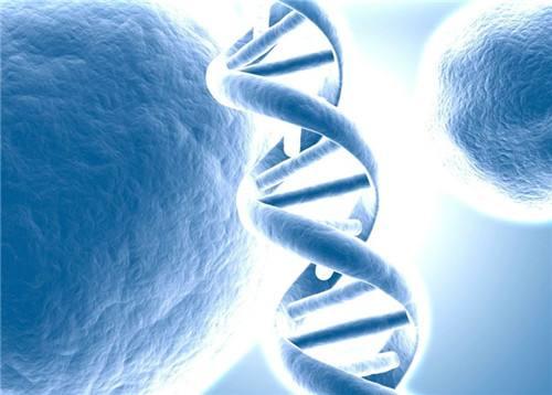 癌基因早筛