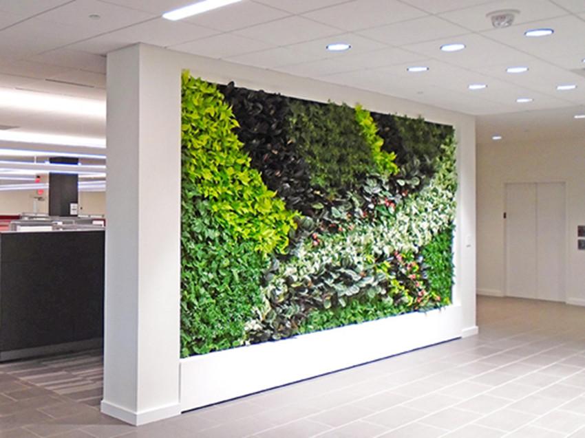 找可信的植物墻設計與安裝就到森雅綠化有限公司|專業的植物墻